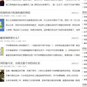 zblog超牛SEO主题 小小蚂蚁主题模版 PHP+ASP宽屏/窄屏共4套