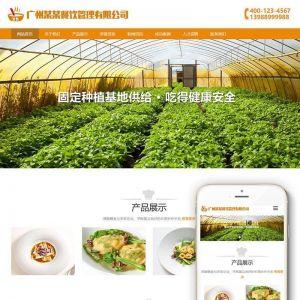 响应式膳食餐饮管理类织梦模板(自适应手机端)+利于SEO优化