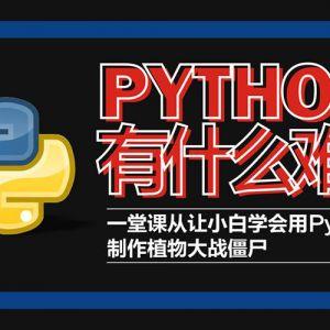 Python轻松入门到项目实战视频课程