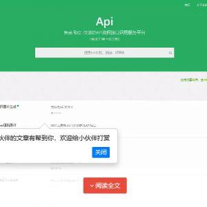 大米API源码 v2.0新UI版本 全网数据api调用平台 引流专用