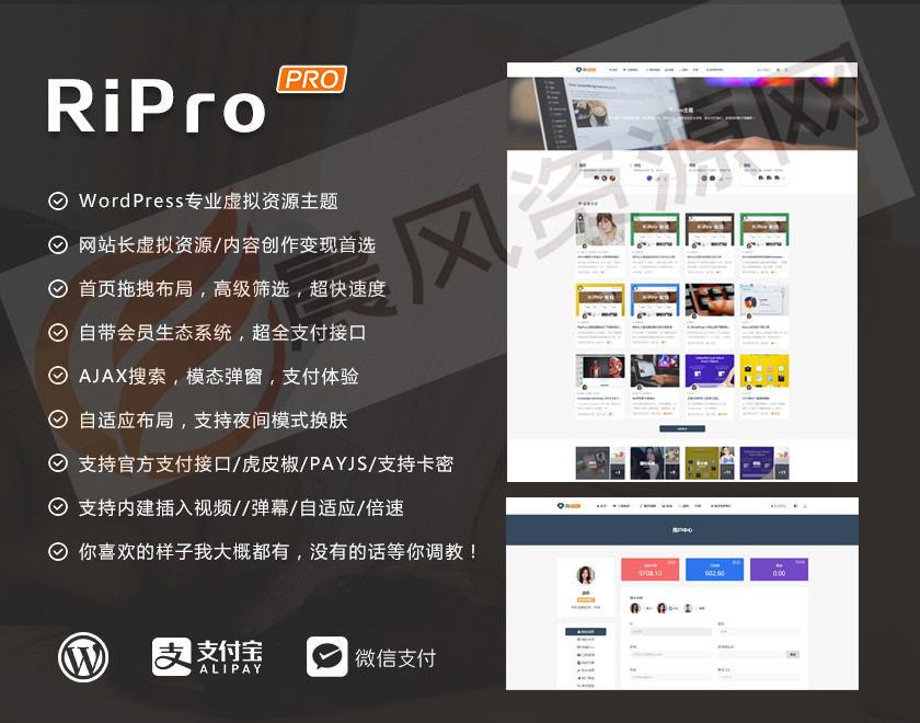 日主题(RiPro6.7)最新独家修复明文破解版 第1张
