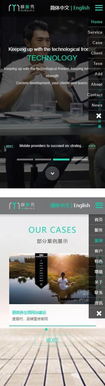 最新运营版双语接单/演示站网站源码 第2张
